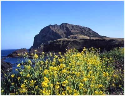 Pico Ilchulbong de la Mt. Seongsan