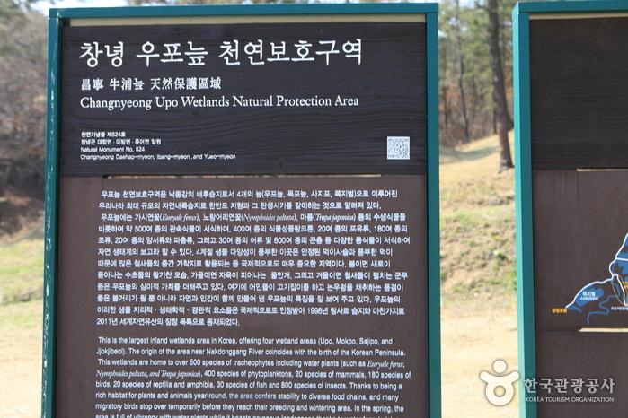 Sumpfgebiet Changnyeong Uponeup (창녕 우포늪)