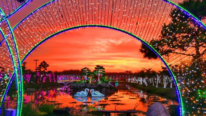 泰安光祭り(태안 빛축제)