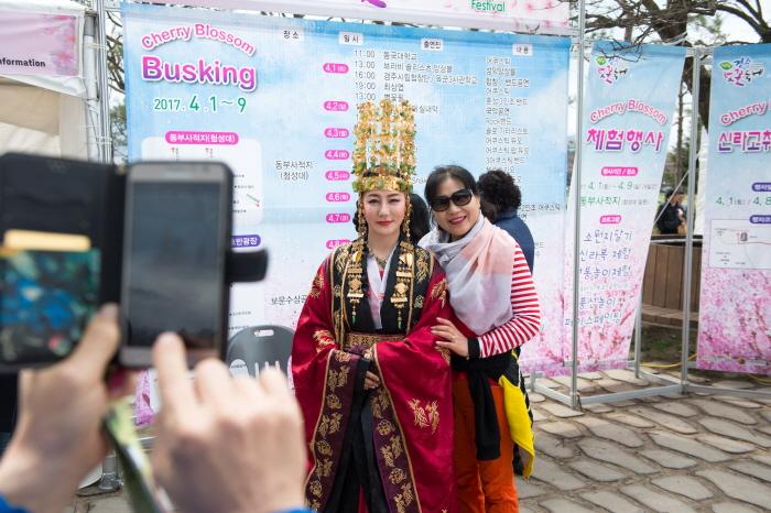 경주 벚꽃축제 2019