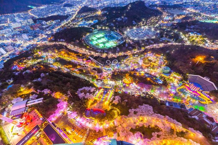 이월드 별빛벚꽃시즌 '다시 벚꽃 피다'
