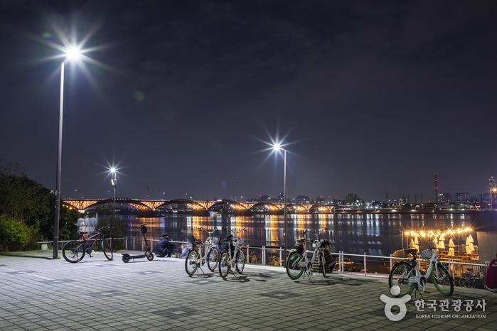 漢江市民公園蘭芝地區(蘭芝漢江公園)(한강시민공원 난지지구(난지한강공원))