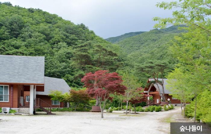 Banghwadong Recreational Forest (방화동 자연휴양림,가족휴가촌)