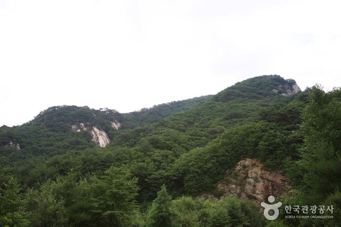 용화산 (강원평화지역 국가지질공원)