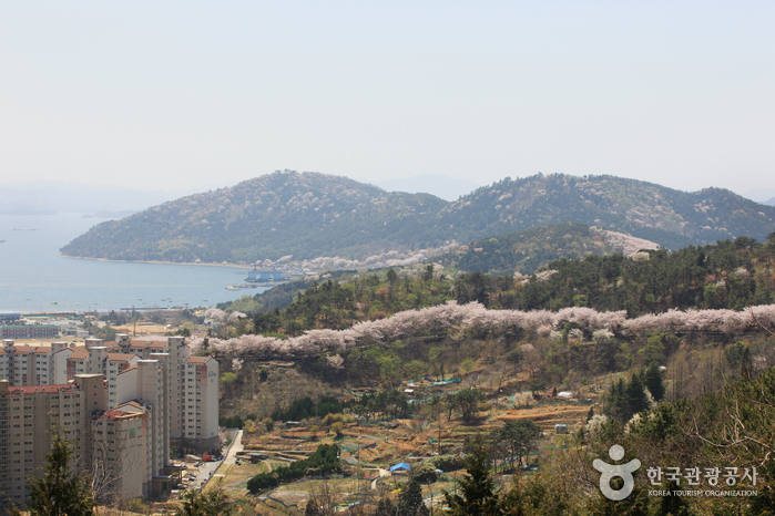 Anmingogae Hill (안민고개)