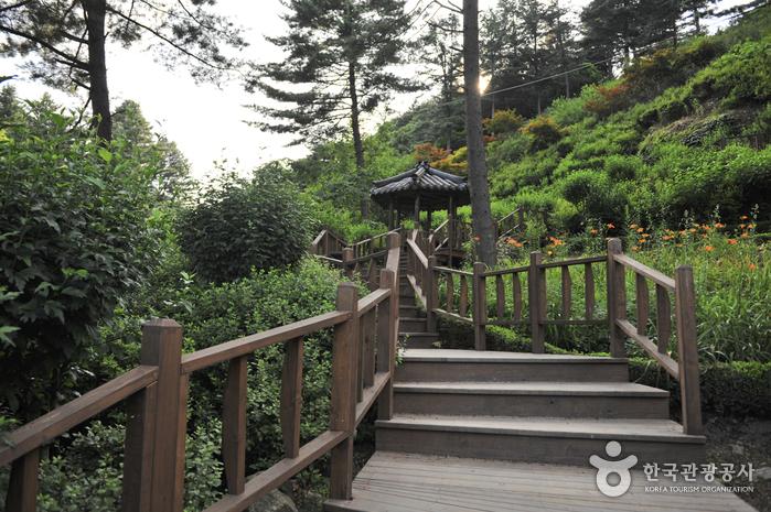아침고요수목원 사진64