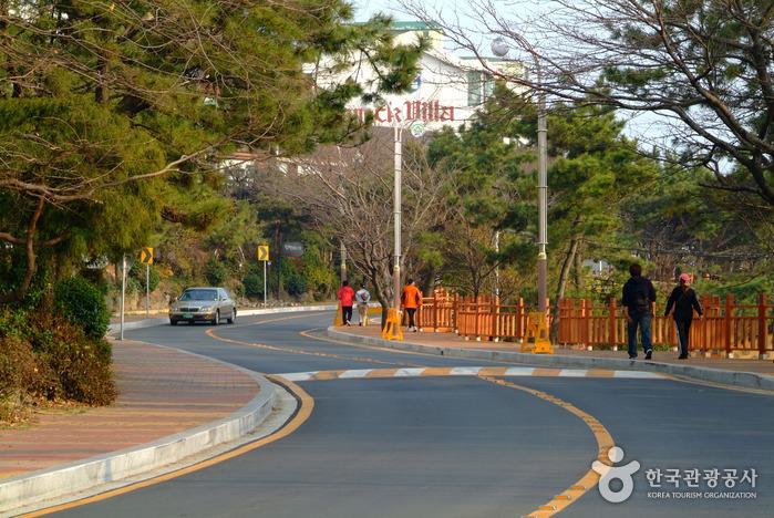 Dalmaji-gil Road (해운...