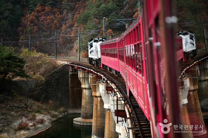 낙동강 물줄기 따라 협곡의 비경을 누리다, 백두대간 협곡열차 V-트레인