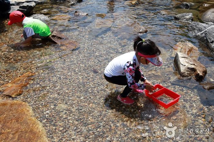 냇물 쉼터에서 물놀이하는 아이들