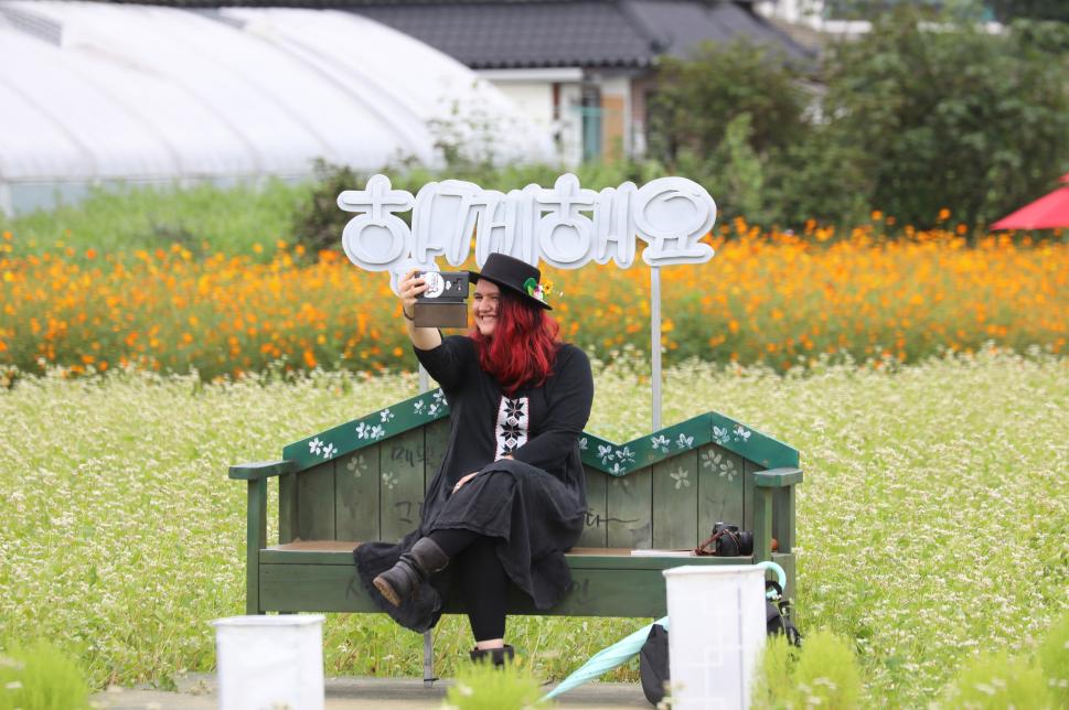 Hyoseok Cultural Festival (평창효석문화제)