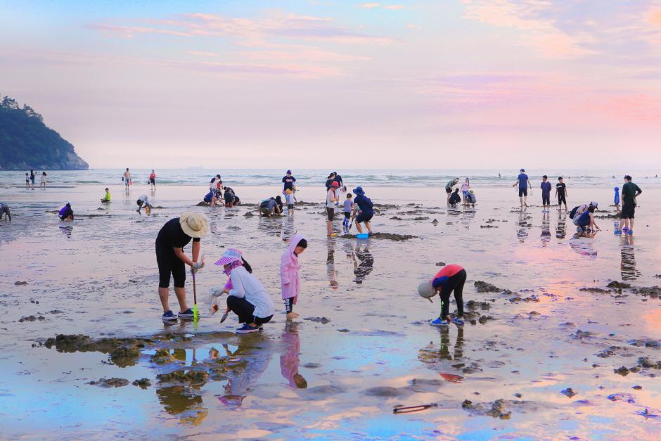 多大浦海水浴場(다대포해수욕장)
