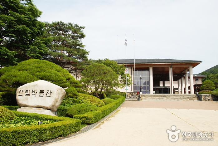 山林博物馆(산림박물관)