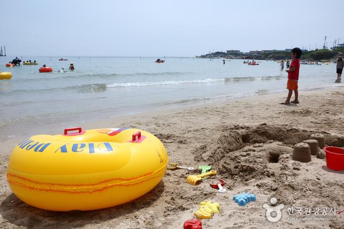 Guryongpo Beach (구룡포해수욕장)