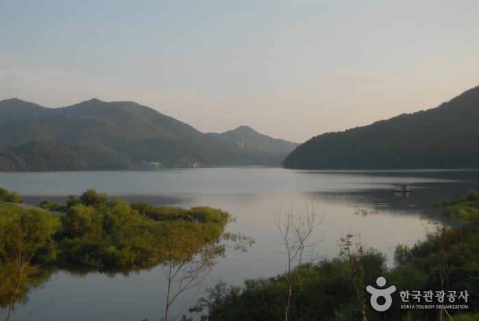 송악저수지(낚시)