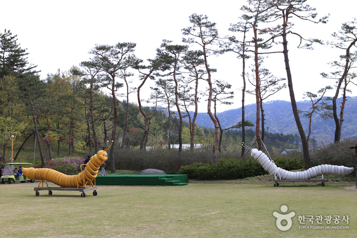 Hampyeong Ecological Park (함평 자연생태공원)
