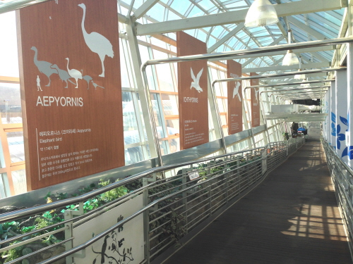 Bird Park à Gyeongju - 경주 버드파크