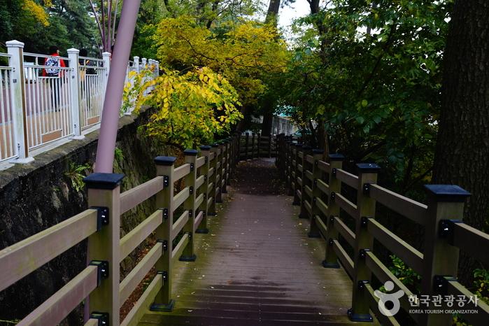 Остров Тонбэксом на Хэундэ (해운대 동백섬)28