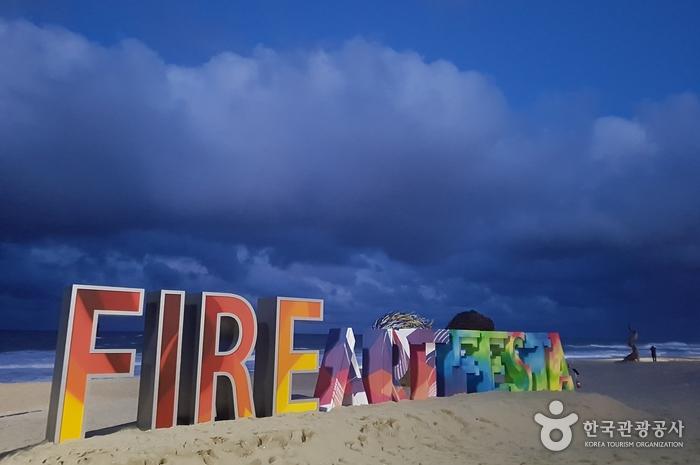 '놓치면 나만 손해!' 평창 동계올림픽 경기장 밖 사용설명서 사진