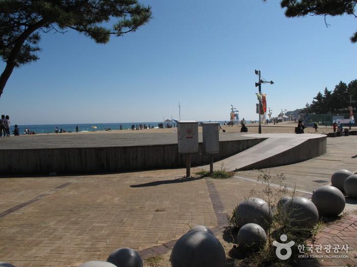 속초해변 사진6