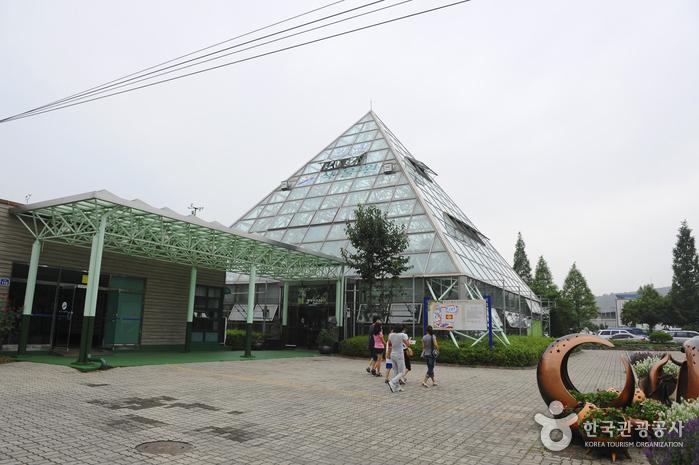 安山植物園(안산식물원)