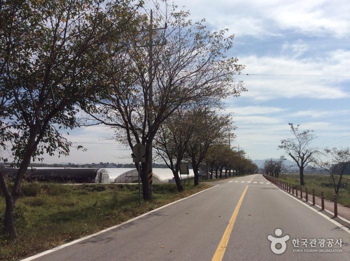 홍성 용봉산체험마을
