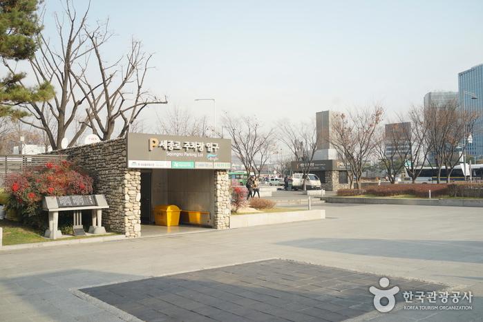 Парк Сечжонно (세종로공원)16