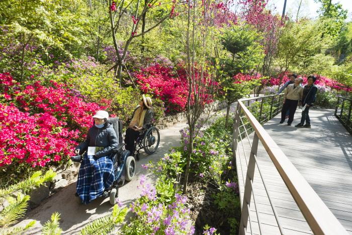 화담숲 '숲속 산책길'(철쭉․진달래원)