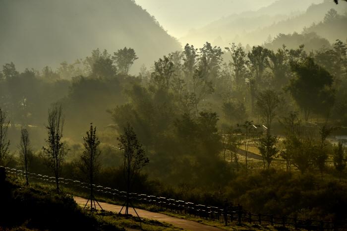 국립백두대간수목원  사진2