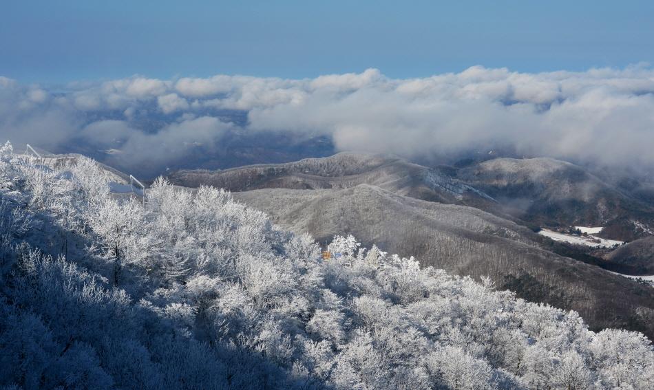 눈으로 뒤덮인 오대산의 전경. 멀찌감치 물러나 발왕산 정상에서 본 모습이다