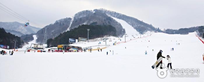 스키장전경