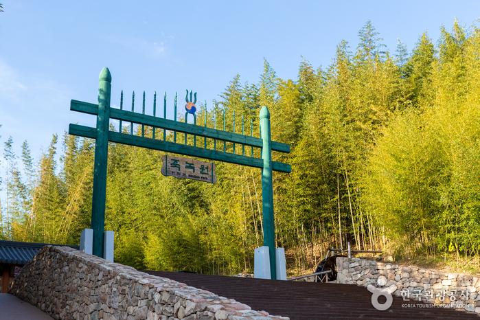Jardín del Bambú Juknokwon (죽녹원)