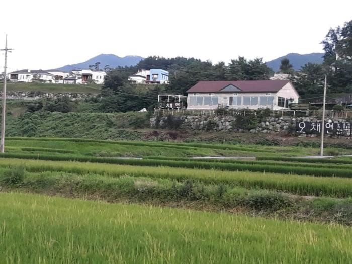 オチェヨン ( 오채연 )