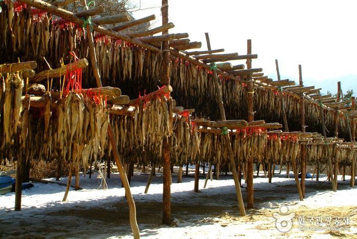Inje Hwangtae Village (인제 황태마을)