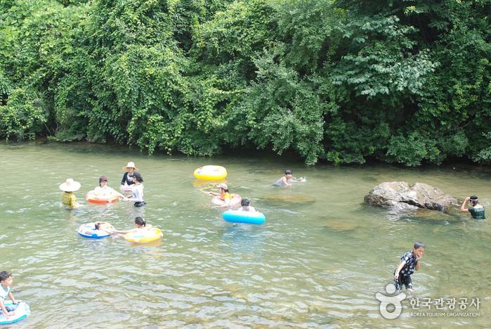Jangnyeongsan Natural Forest (장령산자연휴양림)