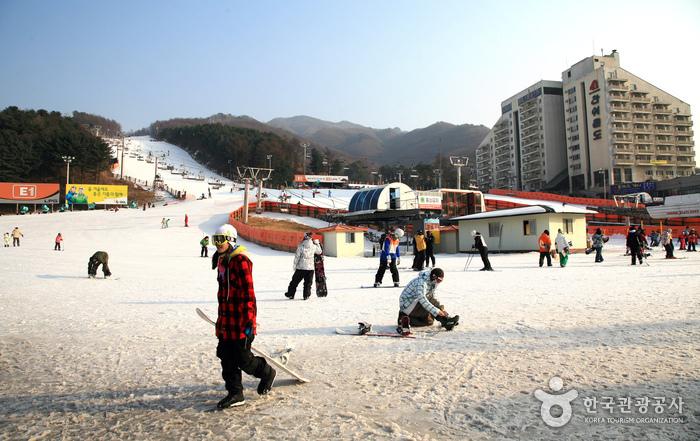 熊城度假村滑雪场(베어스타운리조트 스키장)