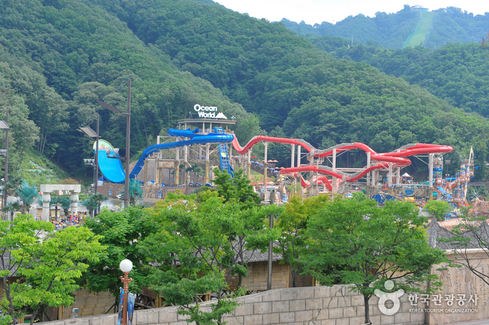 Vivaldi Park à Hongcheon (홍천 비발디파크)