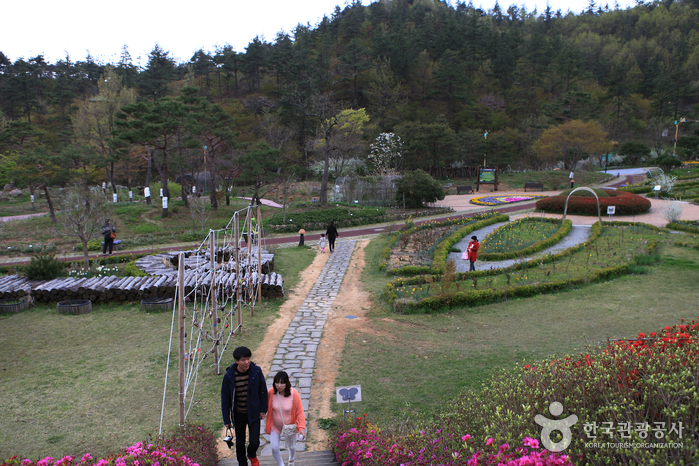 Hampyeong Ecological Park (함평 자연생태공원)