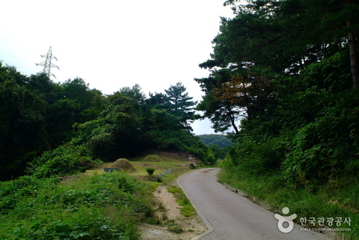 Old Daegwallyeong Road (대관령 옛길)