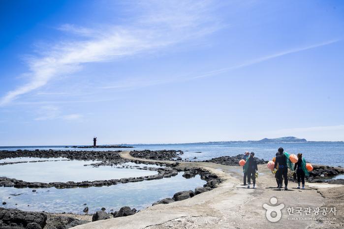 여름 바다체험으로 인기가 높은 해녀체험