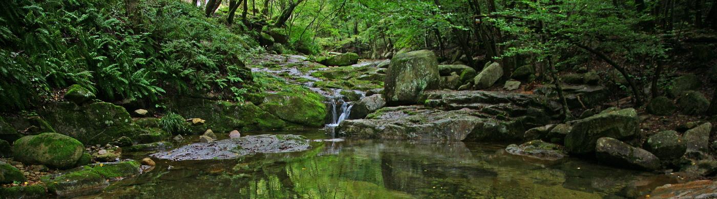 여름 계곡에서 탁족 한 번 즐겨볼까?