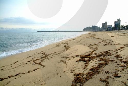 Anmok Beach (안목해변)