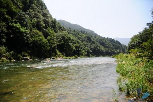 녹수계곡 사진5
