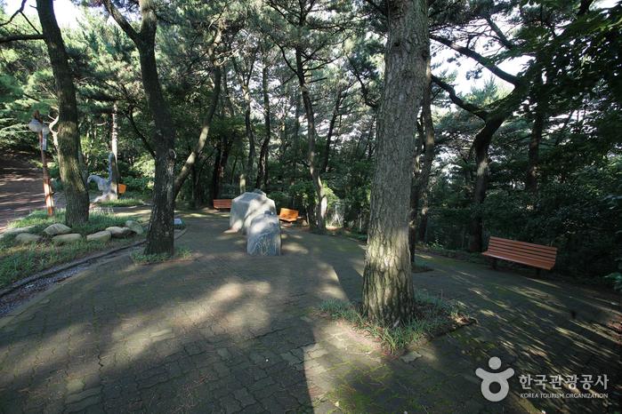 부산 암남공원