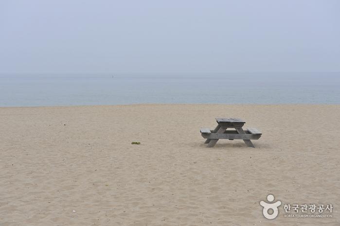 甑山海岸(甑山海水浴場)(증산해변(증산 해수욕장))