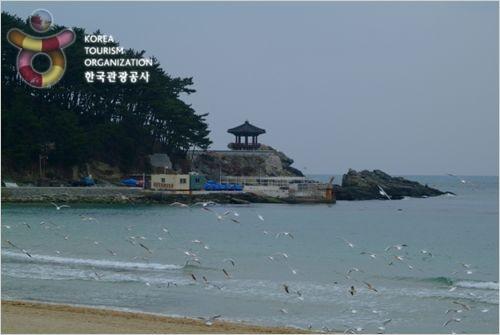 송정해수욕장(낚시터)