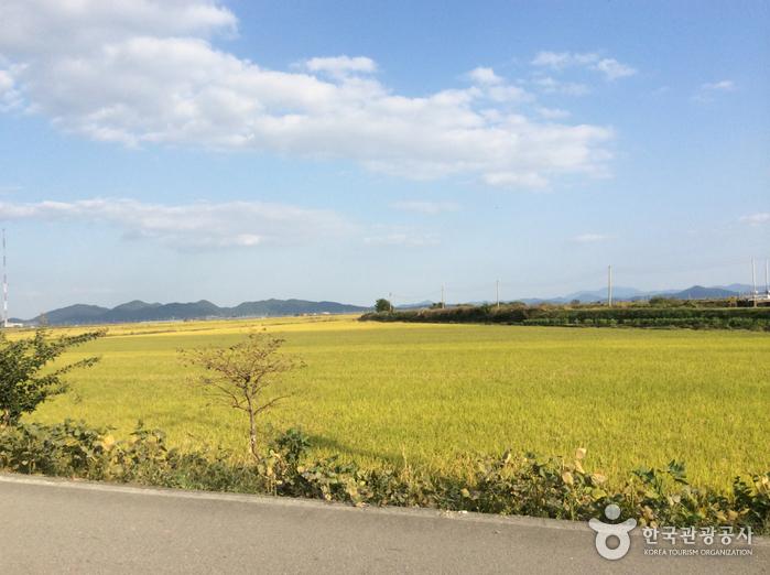 Dorf Boseong Ganggol (보성 강골마을)