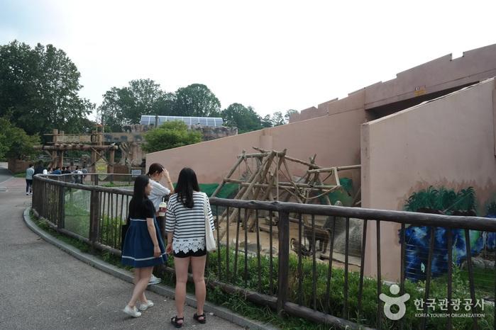 韓国旅行、韓国ツアー | 韓国観...