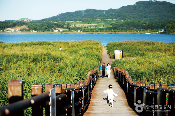 가을로, 서천으로 사진
