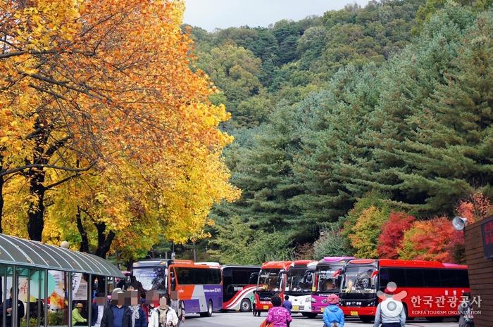 '실속' 육거리시장부터 '낭만' 청남대까지, 다 있는 청주 가을여행