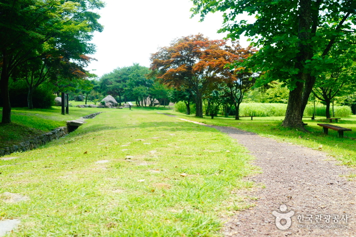 Goindol (Dolmen) Park Suncheon (순천 고인돌 공원)